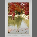 photocard-autumn-110
