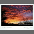 Photocard-sunset-100