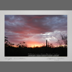 photocard-sunset-116